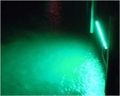 Fishing lights Etc. one of the countryu0027s leading producers of underwater fishing lights introduces the hottest brightest LED underwater and dock lights ... & AlumiGlo LED Underwater and Dock Lights | Coastal Angler u0026 The ...