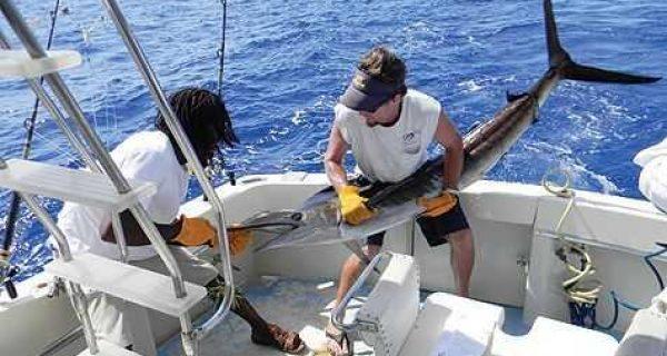 bahamas_sail