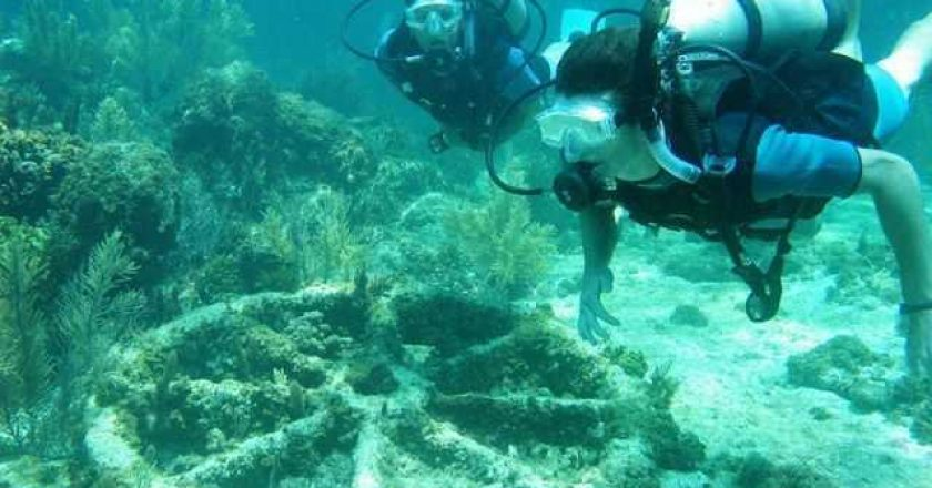 Diving in Abaco photo