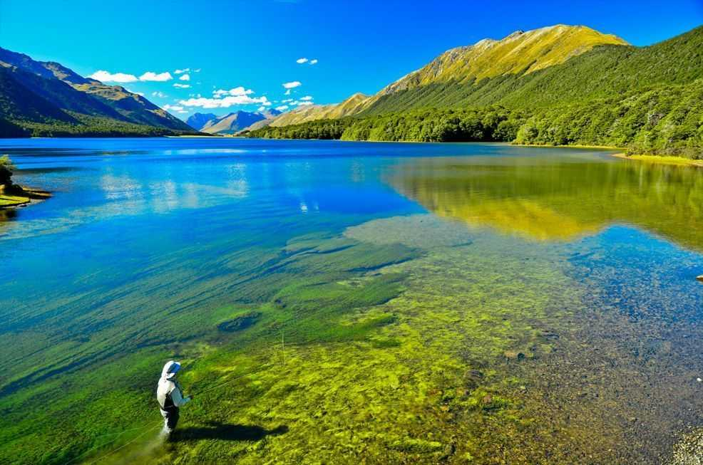 Trout fishing south island new zealand coastal angler for Fly fishing new zealand