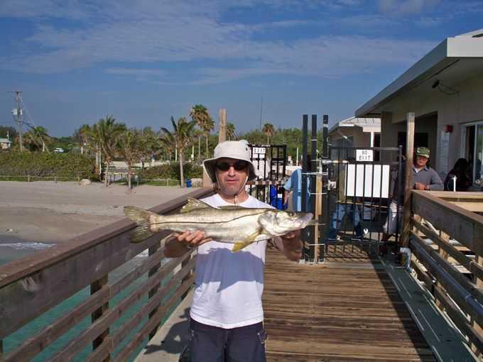 Hawk 39 s cay resort on duck key fishin frank for Snook fishing florida