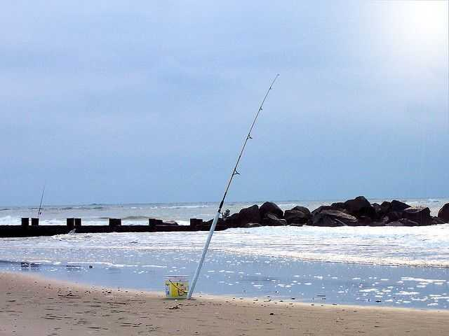 Going surf fishing coastal angler the angler magazine for South carolina surf fishing