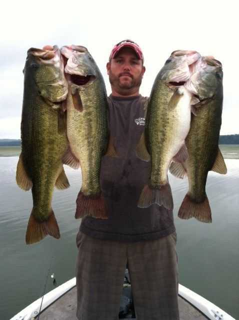 Mark Adams with a Kentucky Lake catch