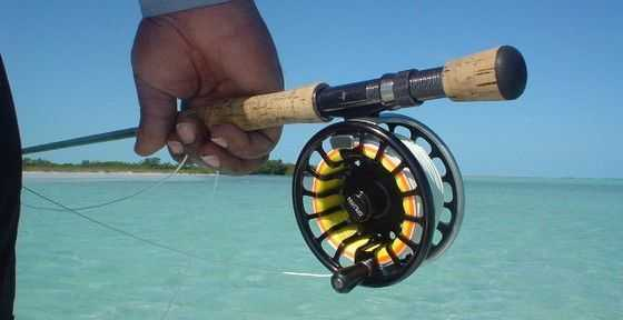 the water haul: a useful cast to master - coastal angler magazine, Fishing Reels