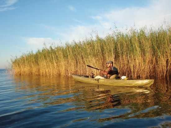 Cocodrie louisiana kayak fishing paradise coastal for Cocodrie fishing report
