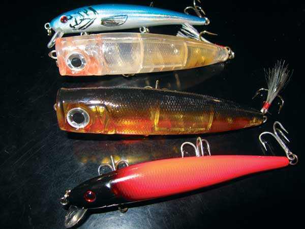 Estuaries-Driving-Lures-and-Poppers