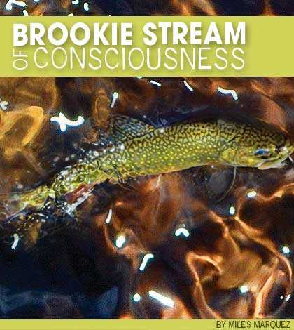 brook-stream2