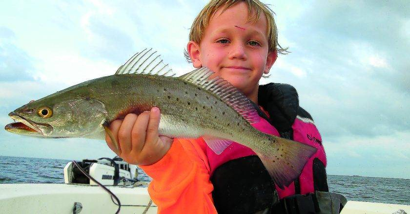 Mississippi gulf coast edition author at coastal angler for Gulf coast fishing report