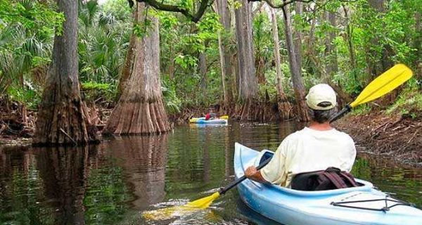 """Loxahatachee River–Florida's first federally designated """"Wild and Scenic River"""""""