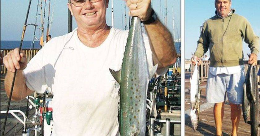 Pier shore fishing reports forecast archives coastal for Alabama fishing report