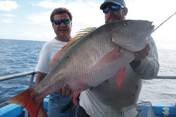 My Favorite Mutton Snapper Bottom Rig Coastal Angler Amp The Angler Magazine