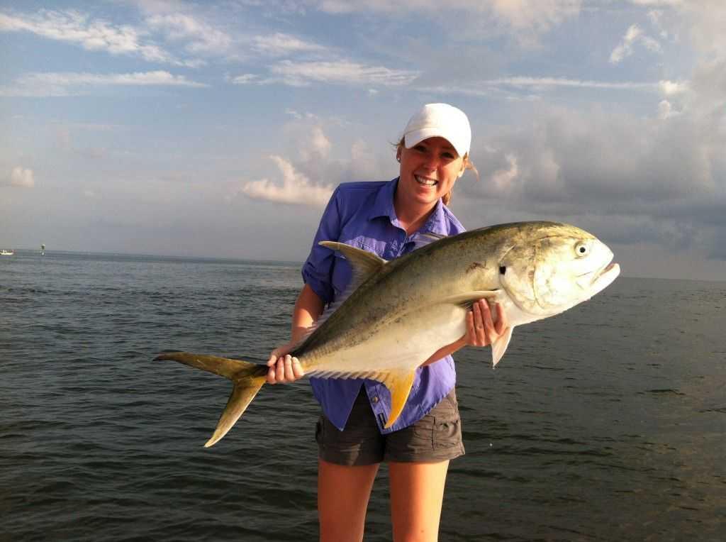 Gulf coast fishing reports for Gulf shores fishing report