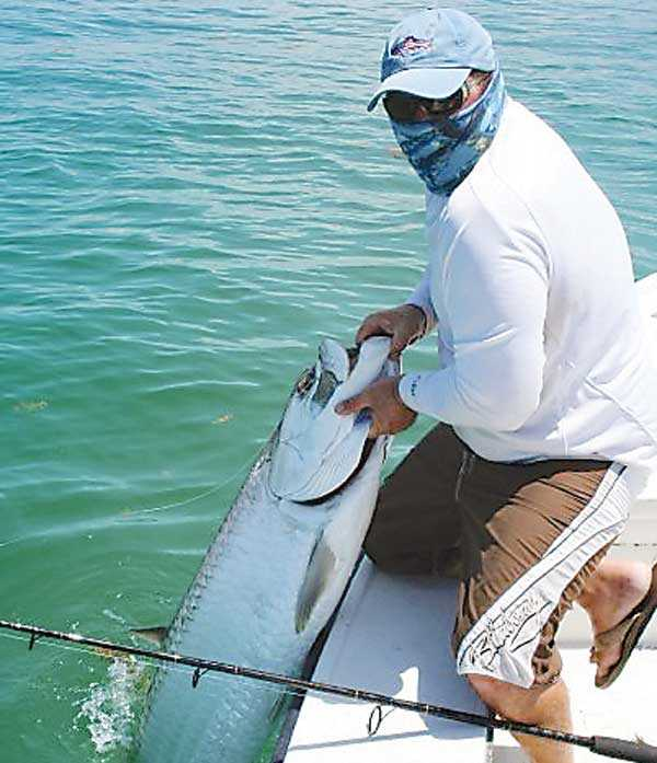 florida-keys-tarpon