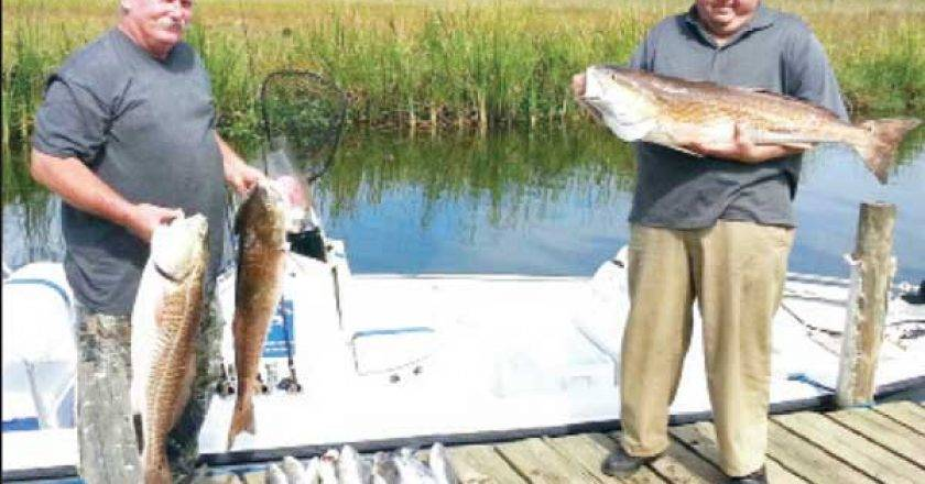 Alabama gulf coast edition archives page 6 of 10 for Mobile bay fishing report