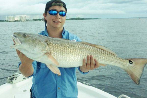 Panama city panama city beach fishing report jan 2014 for Tides for fishing texas city