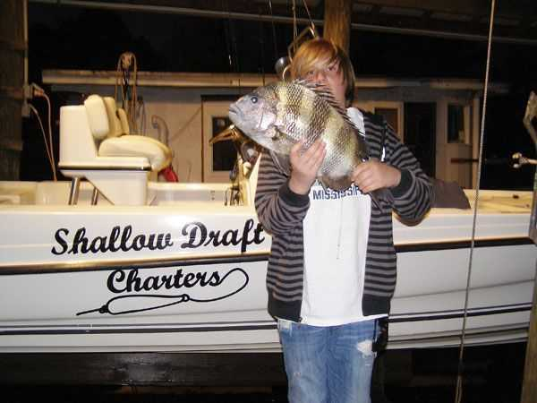 Shallow-Dr_sheepshead
