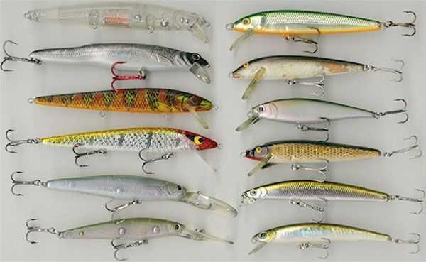 jerkbaits for winter bass | coastal angler & the angler magazine, Hard Baits