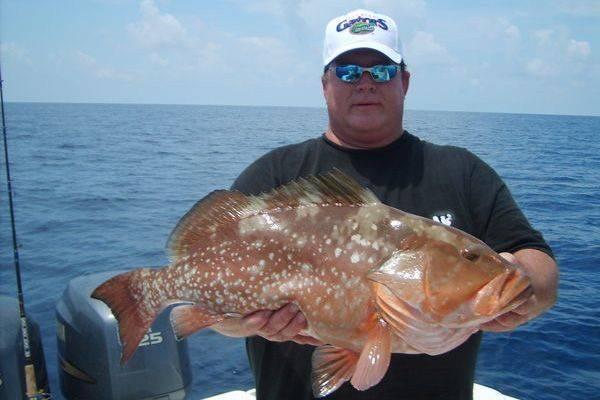 Cedar key fishing report jan 2014 coastal angler the for Cedar key fishing