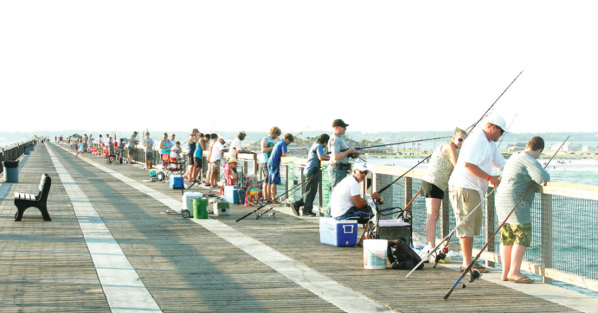 Gulf shores fishing reports forecast archives coastal for Pier fishing gulf shores al