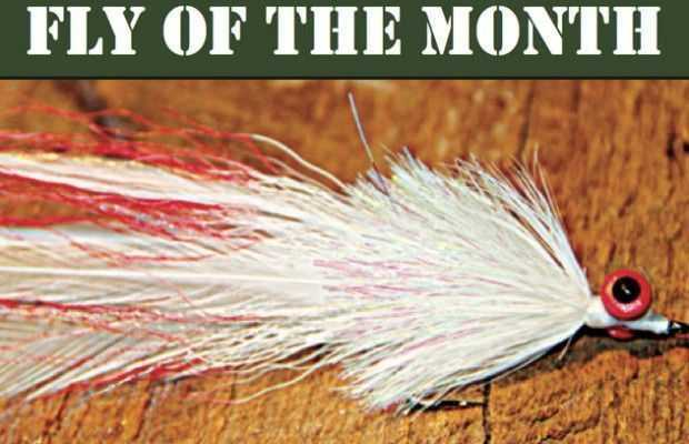 fly-of-the-month
