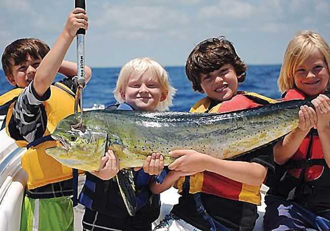 kids-dolphin-fishing