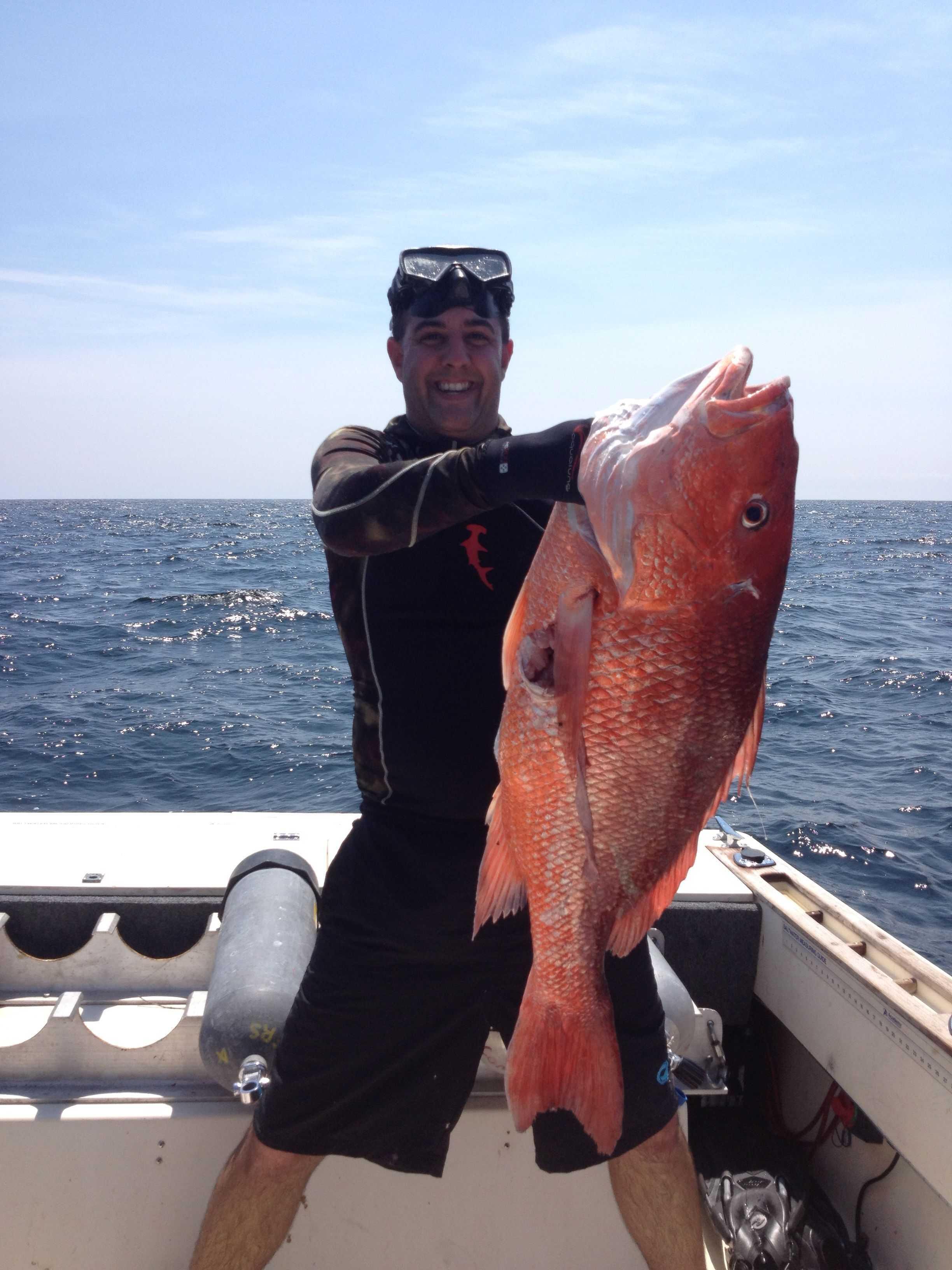 Stuart deep sea fishing report forecast march 2015 for Dauphin island fishing report
