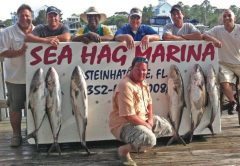 Steinhatchee Fishing Report