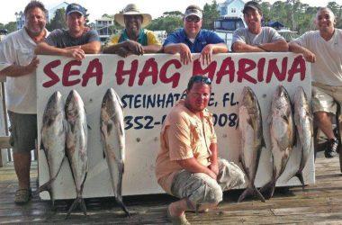 Steinhatchee Fishing Report