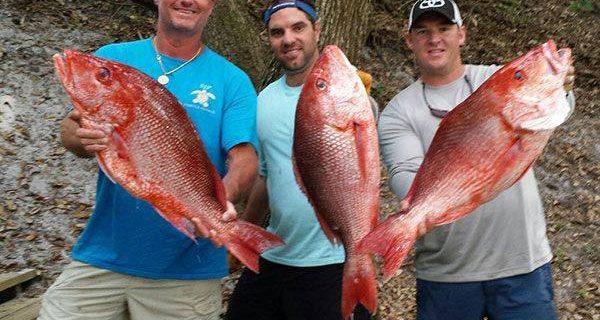 mexico beach fishing forecasts coastal angler the