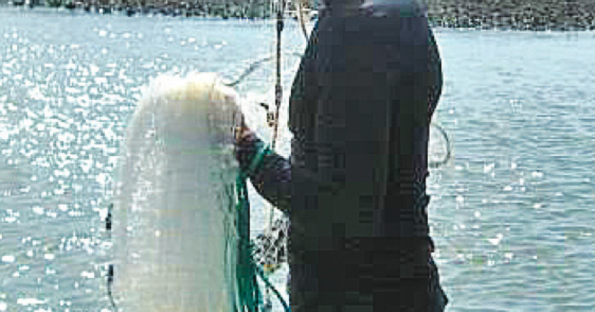 Big bend edition archives page 5 of 12 coastal angler for Big bend fishing report