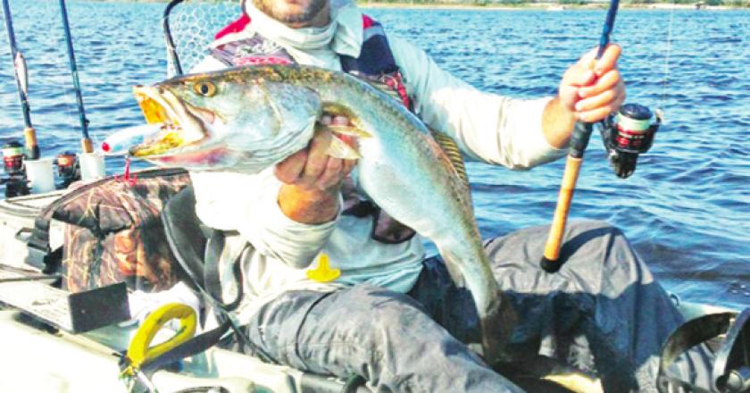 Alabama gc kayak fishing archives coastal angler the for Fishing forecast alabama