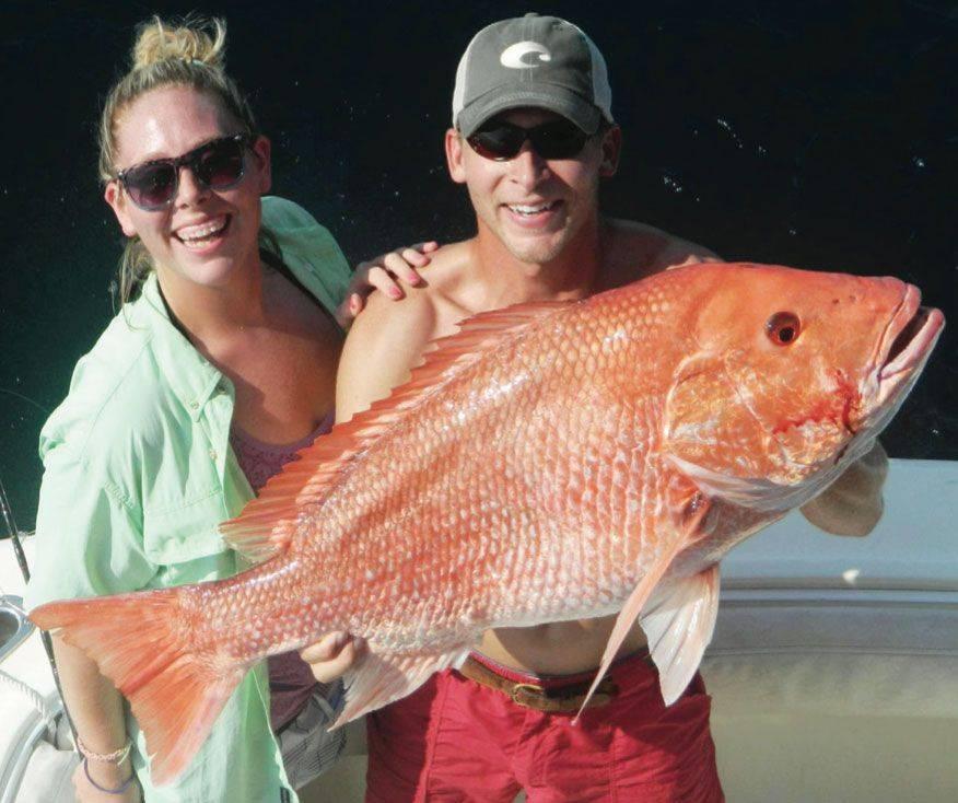 Alabama gulf coast fishing report sept 2014 coastal for Gulf shores fishing report