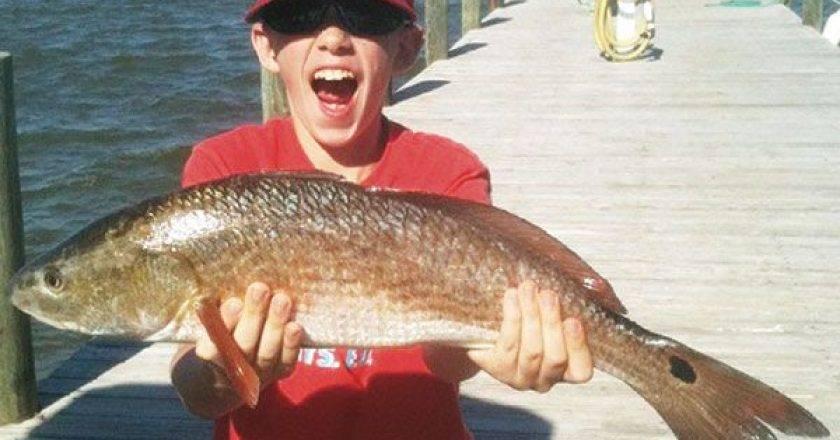 Alabama gulf coast edition archives coastal angler the for Dauphin island fishing report