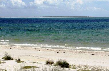 Mexico beach fishing report july 2014 coastal angler for Fishing report mexico beach fl