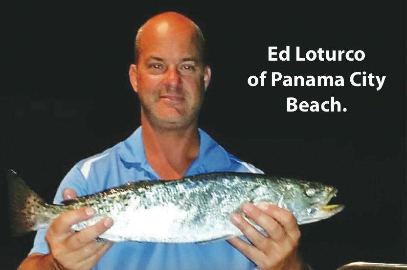 Panama city panama city beach fishing report sept 2014 for Panama city fl fishing report