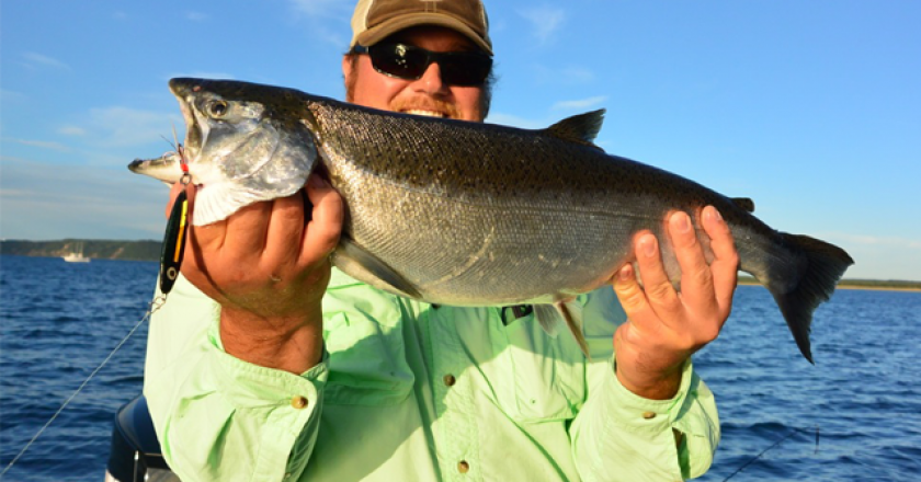 West Michigan Ben Wolfe Author At Coastal Angler The