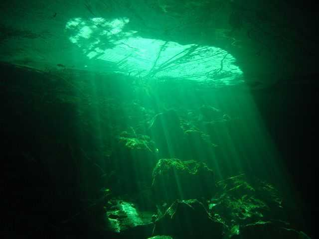 Ben's Cavern is one of our favorite dives this time of year. PHOTO CREDIT: UNEXSO.