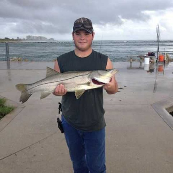 Snook caught at the Fort Pierce Inlet south jetty.