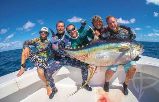 spearing yellowfin tuna