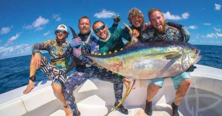 spearing yellowfin tuna