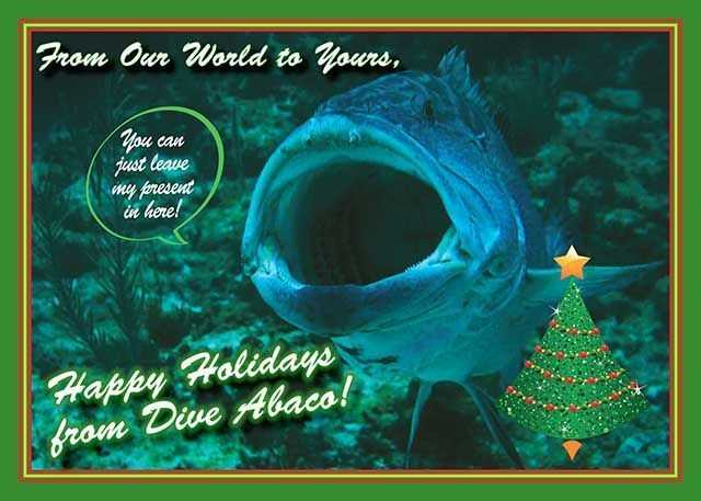 Happy Holidays from Dive Abaco!