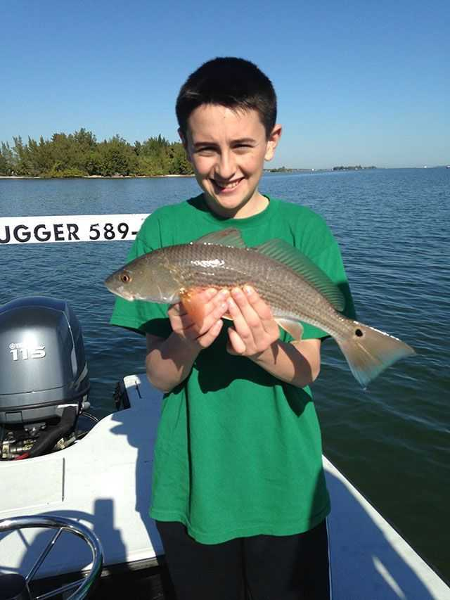 Sebastian inshore fishing report and forecast february for Sebastian fishing report