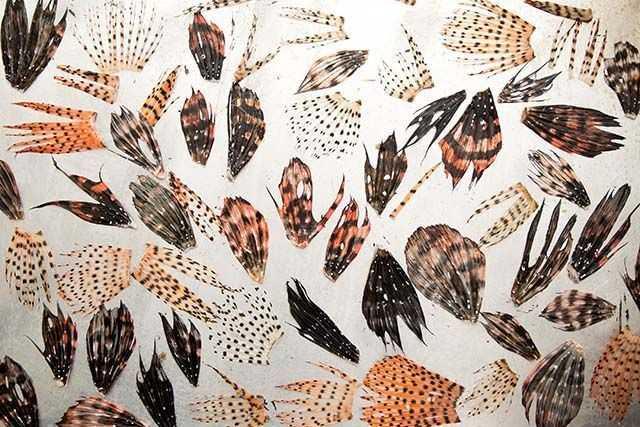 lionfish-jewelry-w