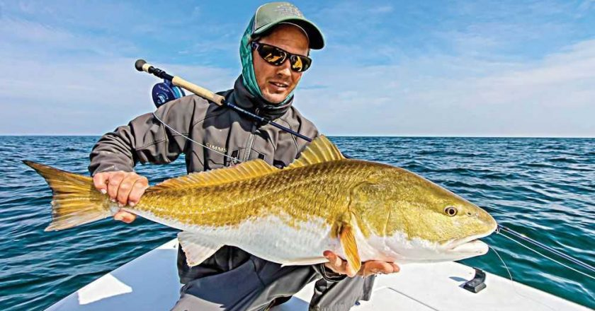 Brevard sebastain inlet to eau gallie archives page 2 of for Sebastian inlet fishing report