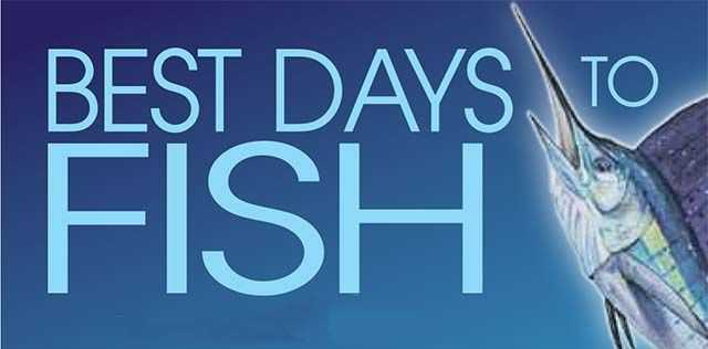 best days to fish coastal angler the angler magazine