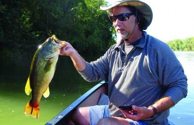 fishing forcast