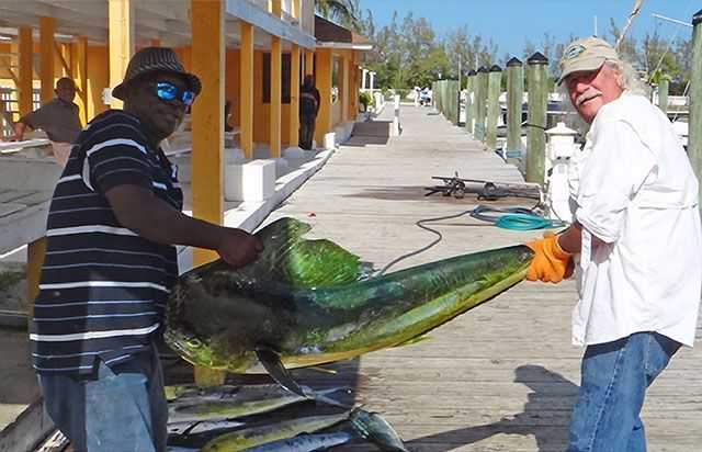 """One of the 26 mahi, 4 tuna, 1 mackerel, 1 wahoo, and a catch and release blue marlin Capt. Breon Whylly and angler Wilbur Baird had fun with fishing """"The Bridge"""" in souther Eleuthera on """"The WaHooligan"""" out of Davis Harbour. PHOTO CREDIT: Kathryn Baird."""