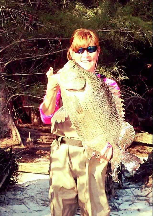 Jodi Parker, guided by her husband Rick Parker, caught this 10-pound tripletail off a Fort Pierc spoil island in the Indian River Lagoon. PHOTO CREDIT: Rick Parker.