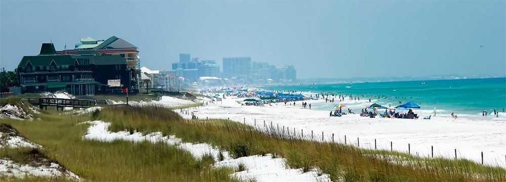 gulf-coast-fishing-reports