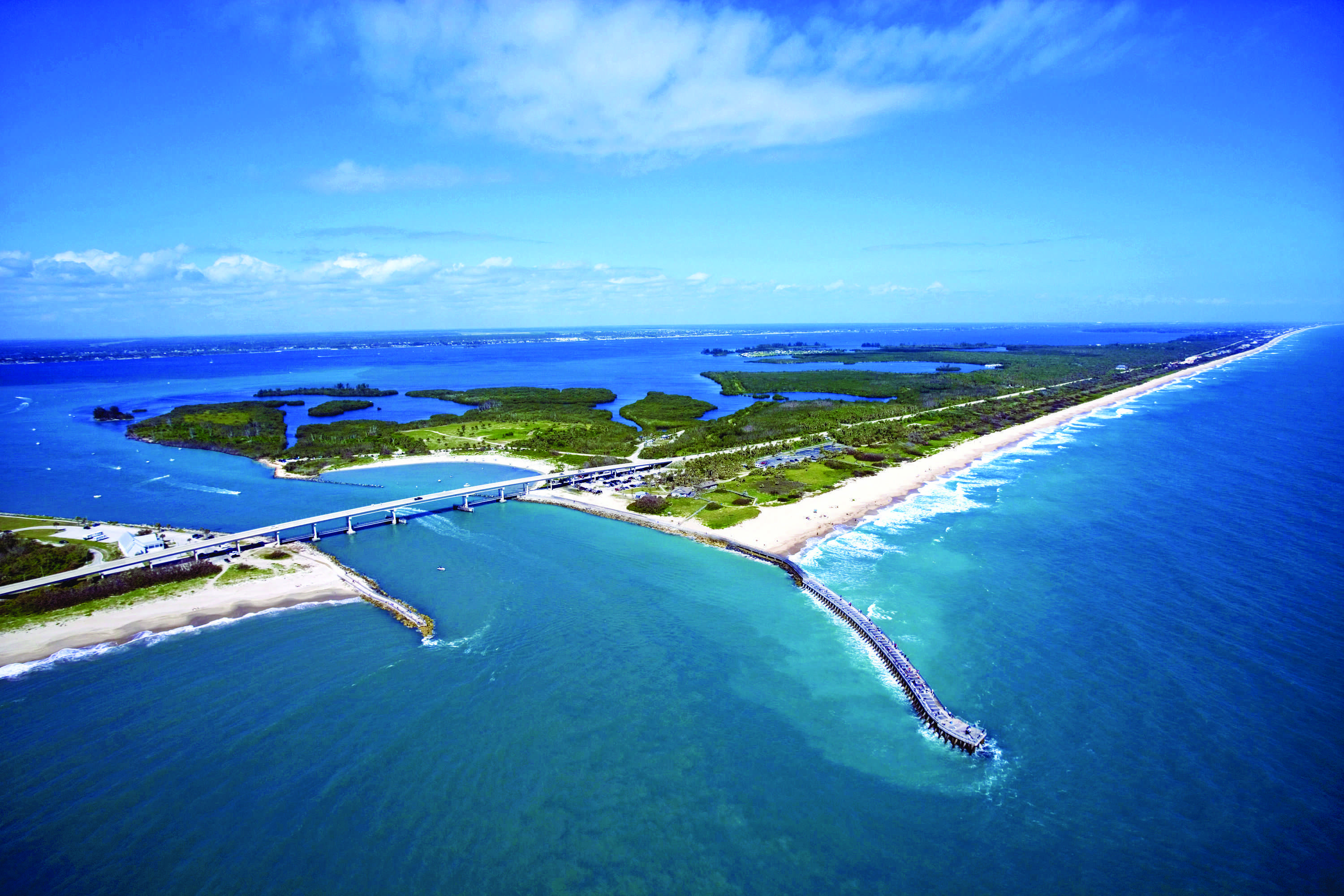 On florida 39 s waters why florida fishing is so great for Indian river inlet fishing tips